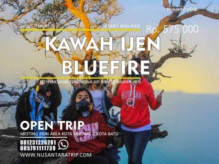 open trip kawah ijen